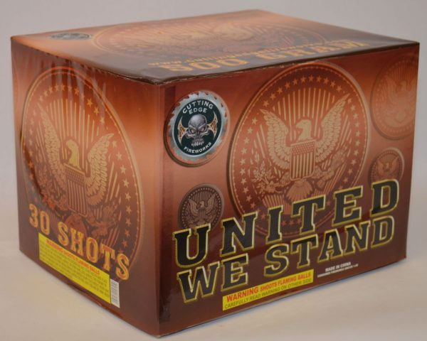500 Gram Finale Cake – United We Stand 1